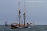 sail16.jpg