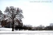 Winter 33